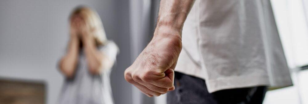 Domestic assault explained